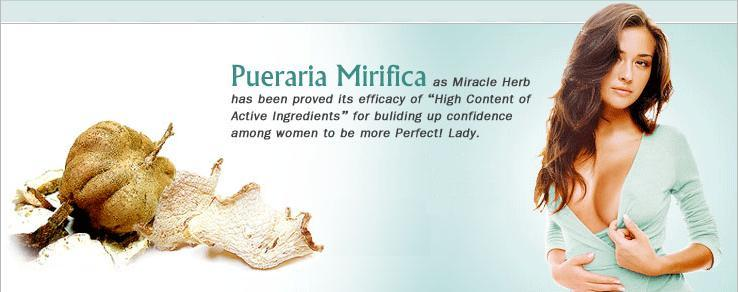 princess breast Pueraria