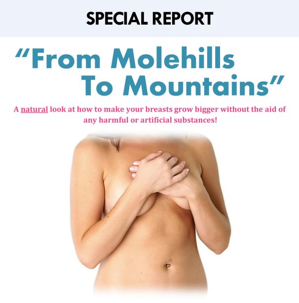 From Molehills to Mountains Cover