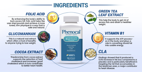 phenocal ingredients